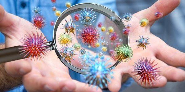 Hilfe bei Auffälligkeiten im Immunsystem