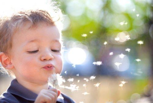 Allergien - Lösung für ein besseres Leben